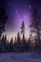 Snow under the stars