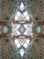 Skeletal Diamond(s)  by Kicen