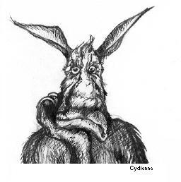 Bunny by cydienne