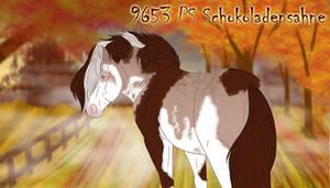 9653 PS Schokoladensahne -ref-