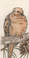 Mourning Dove Birdmark