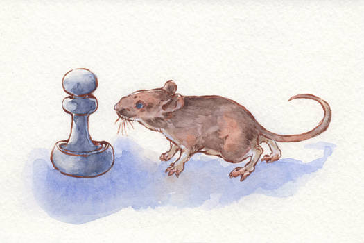 Mouse and Pawn