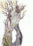 Treebeard by Nandah