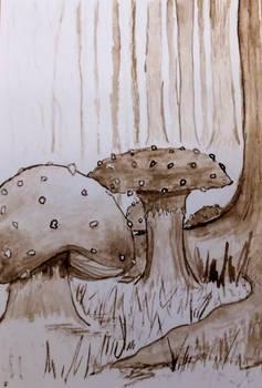 Sepia Mushrooms 4