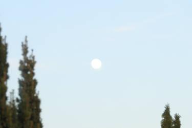 Moonsun 2 by Dowlphin