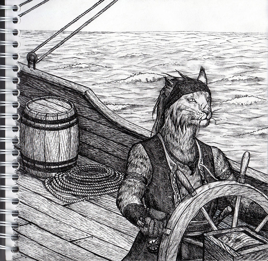 He's a pirate by Frozenmudcrab
