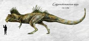 Giganotosaurus spp.