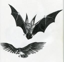 Batmanimals: Batman and Robin