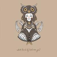 Owl by paperbeatsscissors