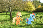 Applejack and Rainbow Dash in Somerset