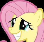 Fluttershys Pleading Smile