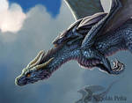 The Blue Dragon, details