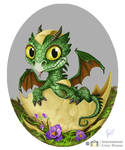 Baby Dragons, commissions