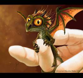 Baby dragon by Amisgaudi