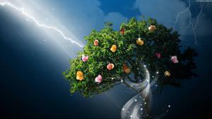 Secret Tree by StarwaltDesign