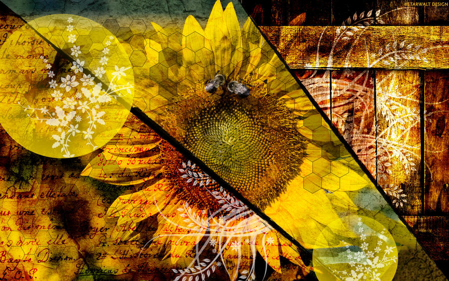 The Sunflower Collage by StarwaltDesign