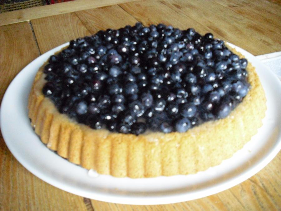 Blueberry cake by LittleAlicorn on DeviantArt