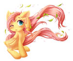 Fluttershy's Windy Day