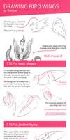 Tutorial: Drawing Bird Wings