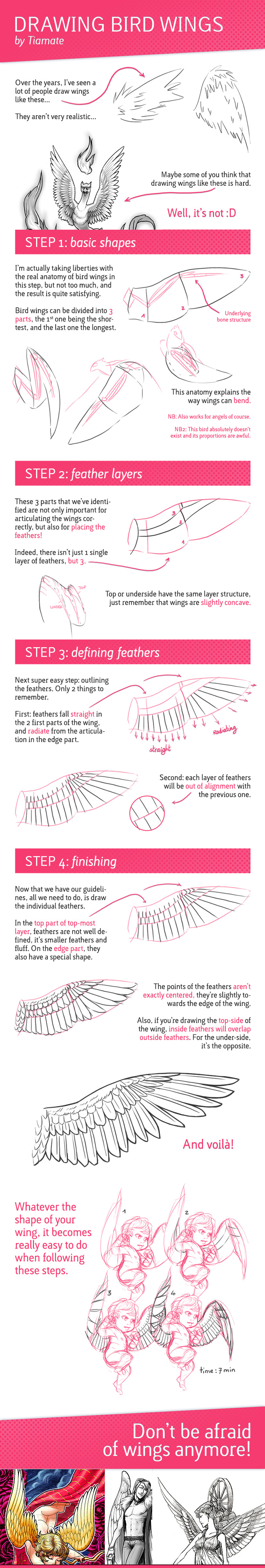 Tutorial: Drawing Bird Wings by Tiamate