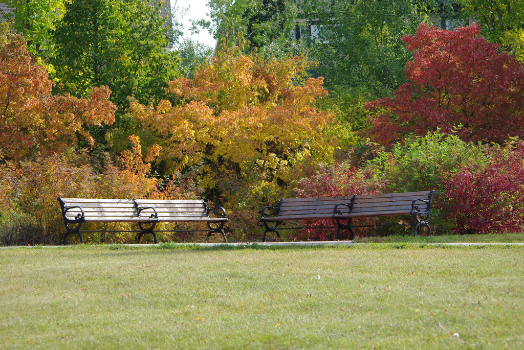 Park Benches by CJayS