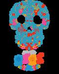 Disney Pixar Coco Skull