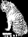 Tiger Pixel