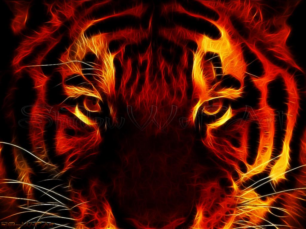 Black Cat Red Eye