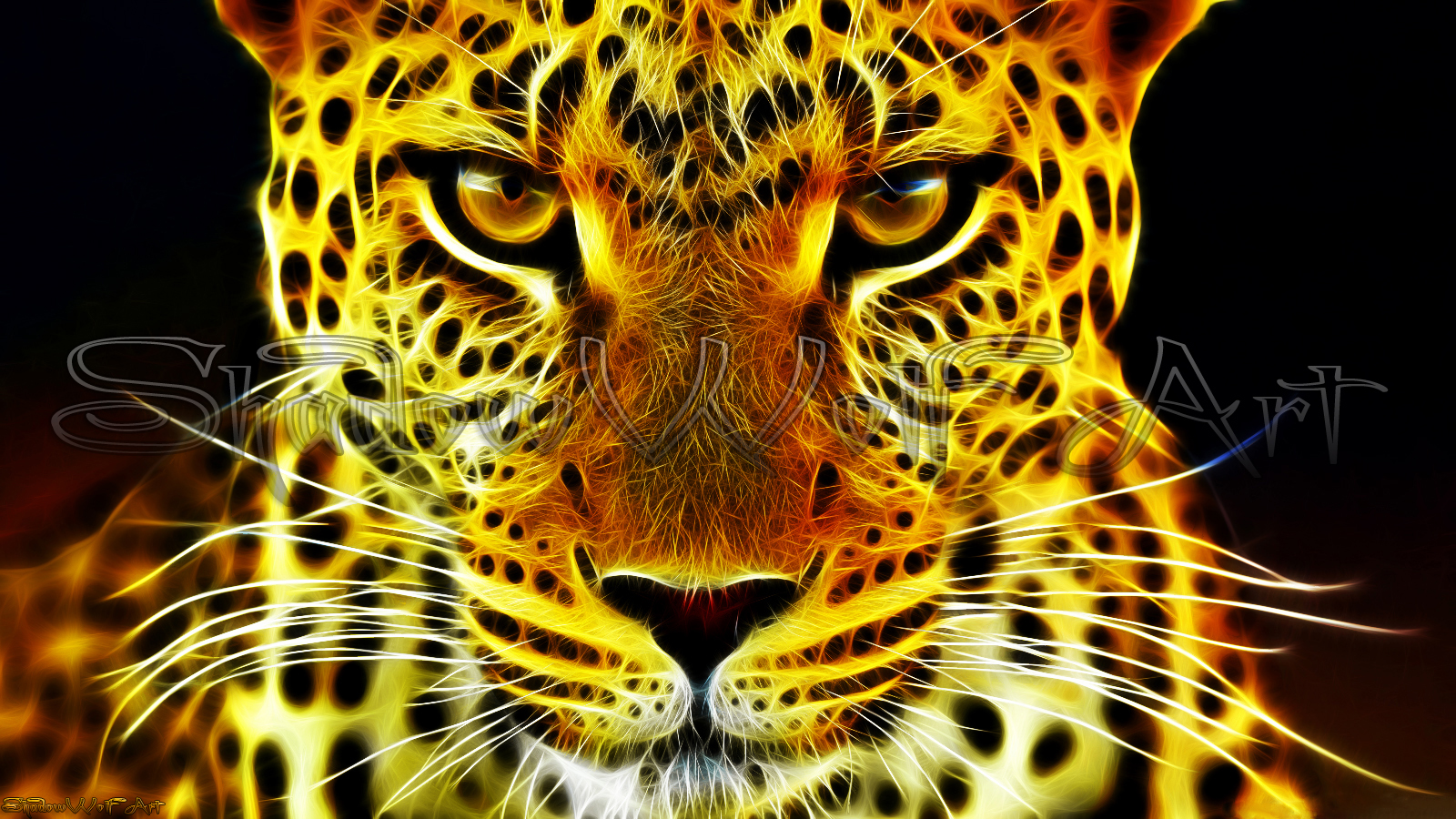 leopard wallpaper by shadowwolf 666 on deviantart
