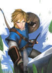 The legend of Zelda: Breath of the Wild | Fanart