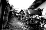 Becak _pedicab_ and poverty
