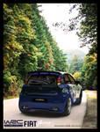 Fiat Punto WRC 3