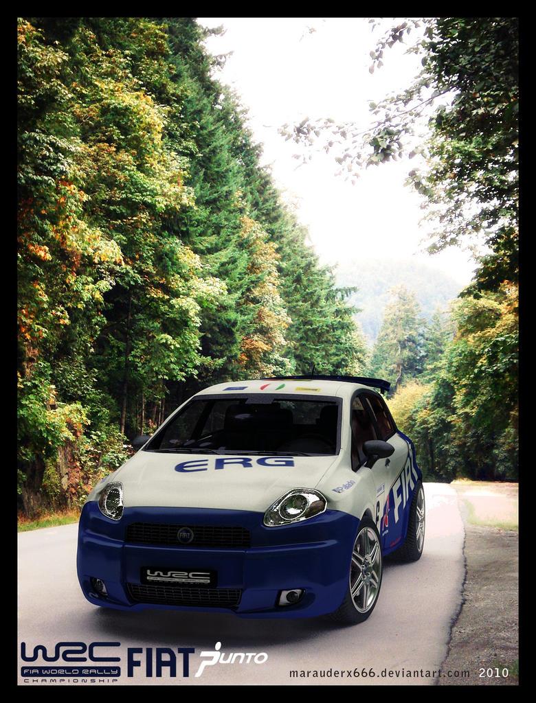 Fiat Punto WRC 4 by marauderx666