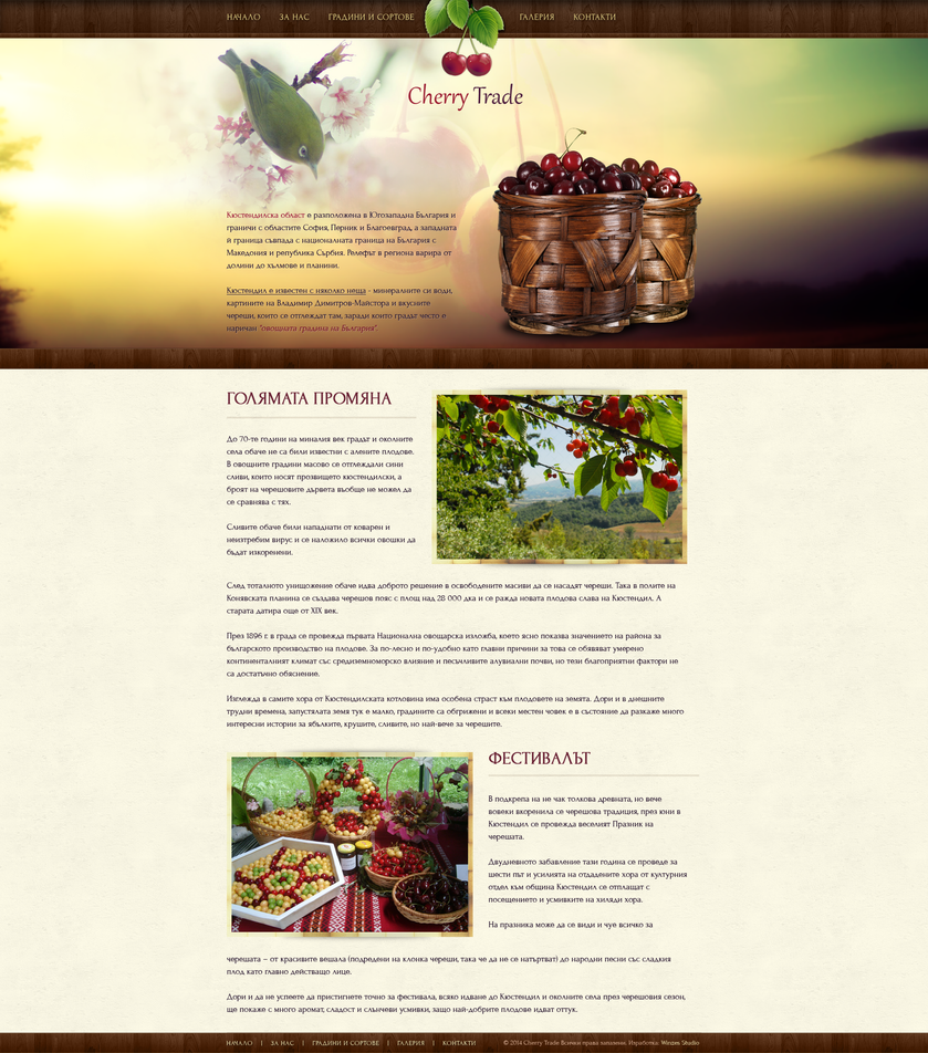 Cherry Trade Design Concept by winzes