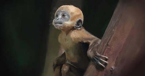 Freakazoid, Chimpanzee