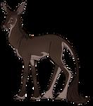 Valko | Buck | Herd Member