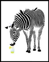 Zebras have more fun by jussta