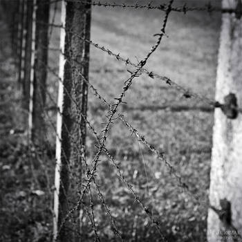 Majdanek by jussta