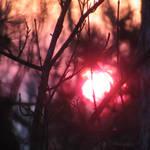 winter sunset by linkingabo