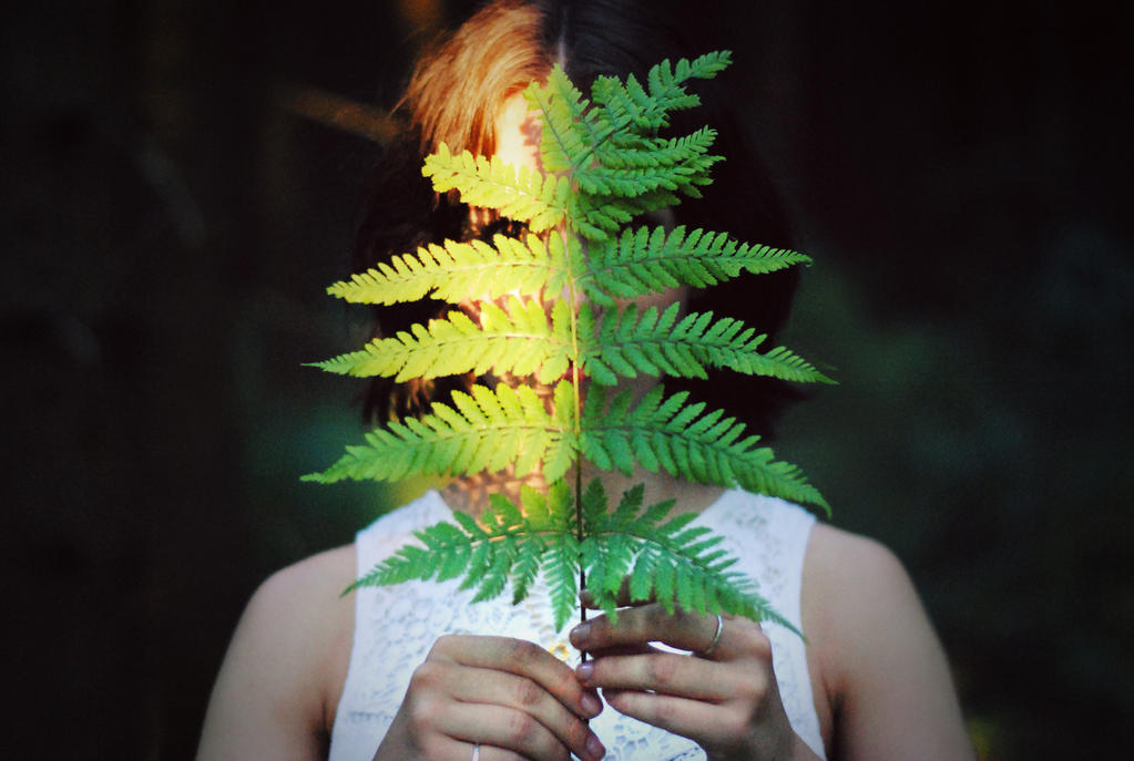 sporophyte by LizHeartcore