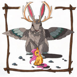 Wolpertinger and Fluttershy
