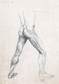 Anatomy Live Drawing Sketch Leg Study