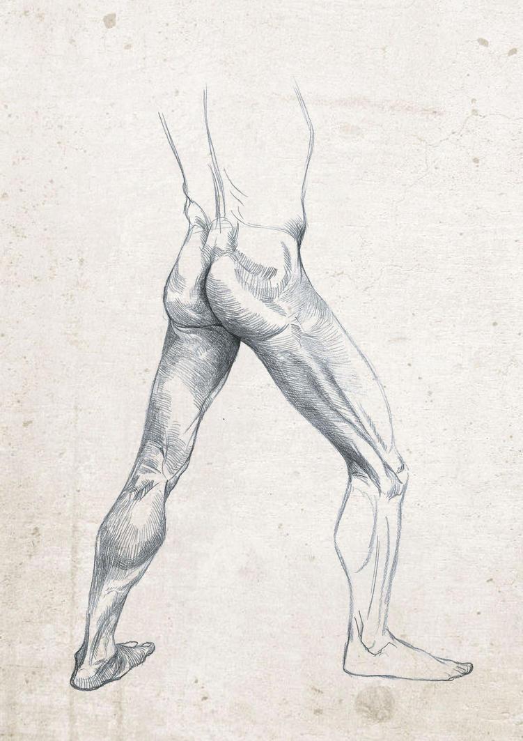 Anatomy Live Drawing Sketch Leg Study By Safdaralimirza On Deviantart