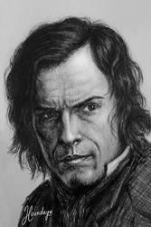 Mr Rochester by Lenka-Slukova