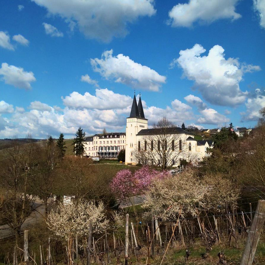 Kloster Johannisberg by Lenka-Slukova