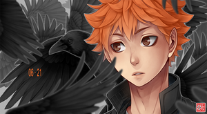 Haikyuu!! - baby crow