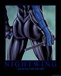 Nightwing DP
