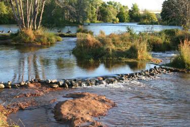 American River 3