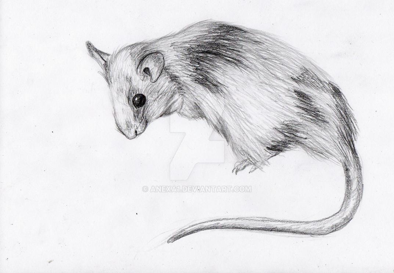 Antonio Mafia Mouse by anexa1