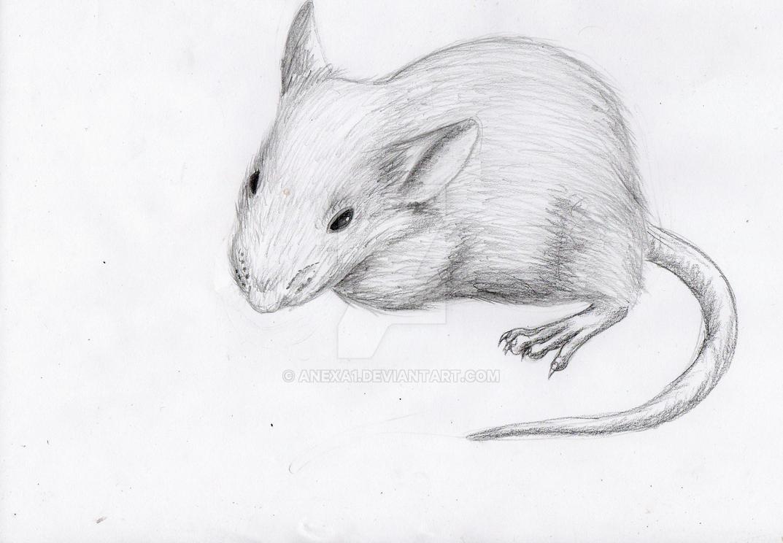 Hedvika Mafia Mouse by anexa1